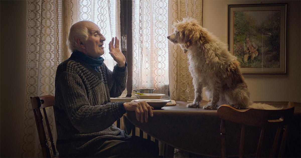 Aurelio Conterno with Birba in THE TRUFFLE HUNTERS. Cr: Michael Dweck and Gregory Kershaw/ Sony Pictures Classics