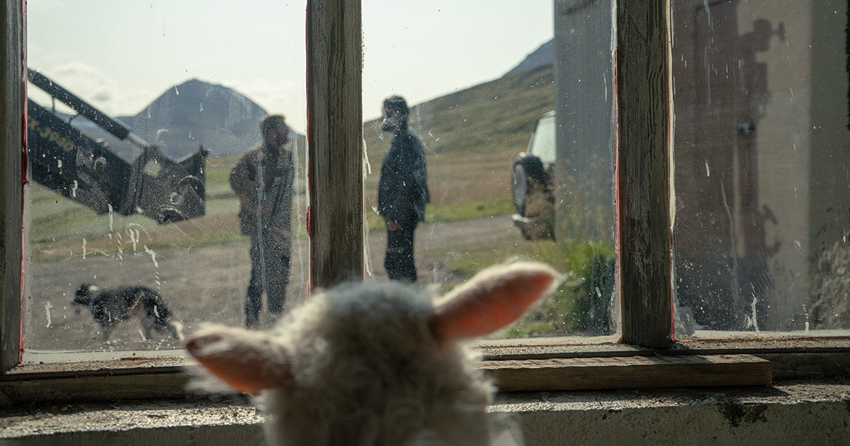"""From """"Lamb,"""" image courtesy of A24"""